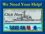 We need your help to **Save an MSO**